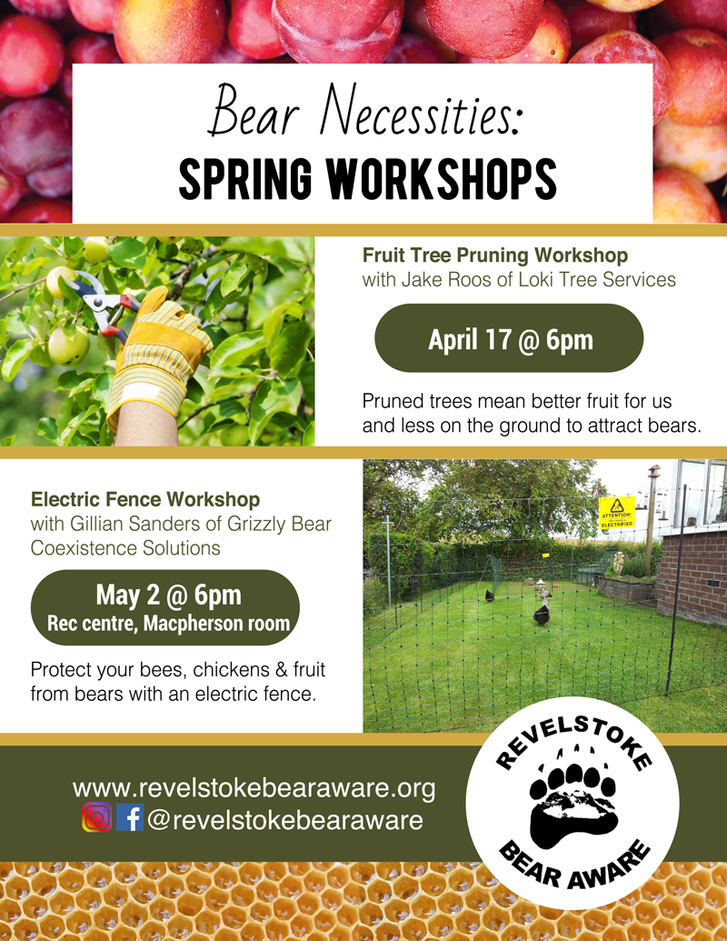 Revelstoke Bear Aware Bear Necessities Spring Workshops