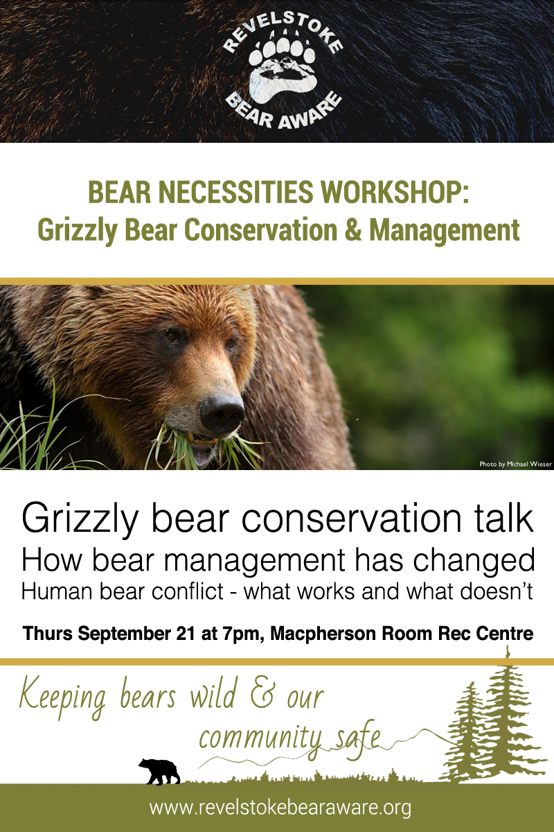 Bear Necessities Workshop