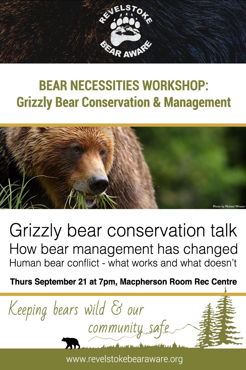 Bear Necessities Workshop
