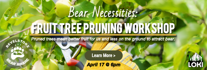 Revelstoke Bear Aware Bear Necessities Fruit Tree Pruning Workshop